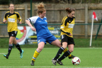 Crawley Wasps v Parkwood 04/03/18